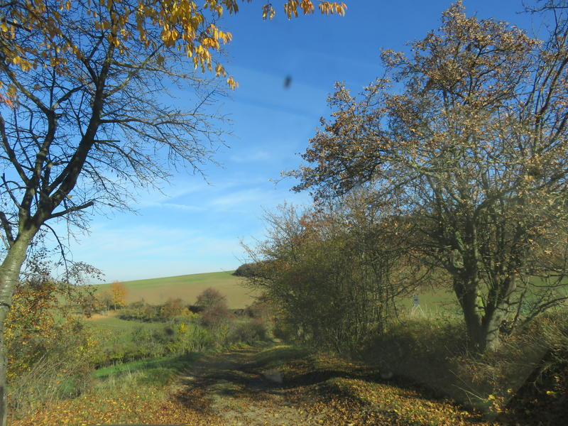 Thüringen Adventure Offroad 2015
